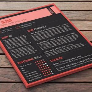 Customized Professional CV - Zeigei..